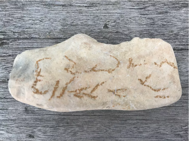 a picture of a white stone with handwritten marks that look like writing